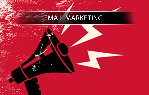 Email Marketing Portfolio logo