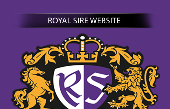 Royal Sire Website Portfolio logo