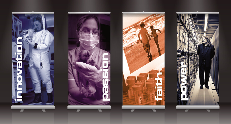 San Antonio | Banner Design